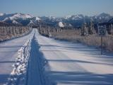 DCC asks for changes to Denali Park Road Winter Plowing proposal